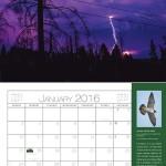 Bonny Doon CERT 2016 Calendar - January